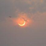 Schrodinger's Eclipse